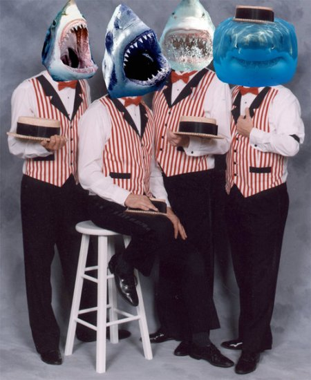Barber Shark Quartet