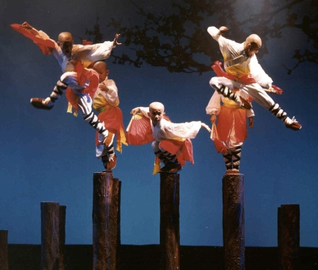 The Shaolin Warriors