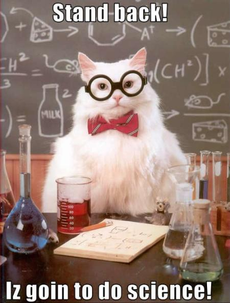 Cat Scientist