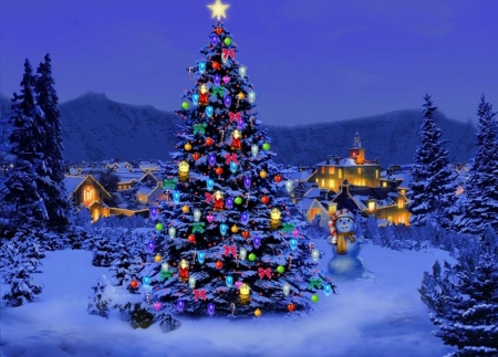 Christmas Tree: Conifers, Spruces, and Pines