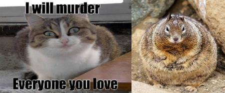Creepy Cat and Fat Squirrel