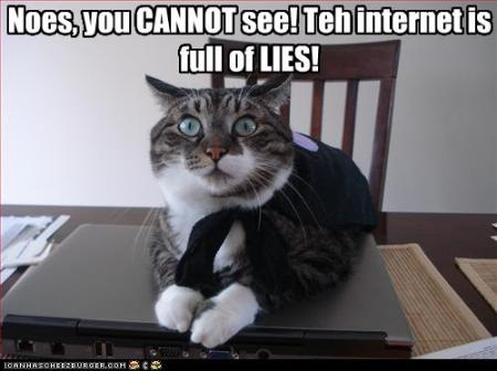 Cat Warns of Lies on Net