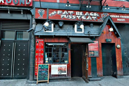 The Fat Black Pussycat Lounge 2