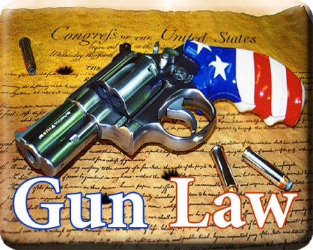 All Rise: Law on Guns